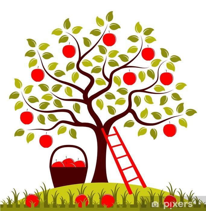 Papier peint vinyle Récolte de pommes - Saisons