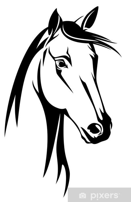 Carta Da Parati Testa Di Cavallo Disegno In Bianco E Nero