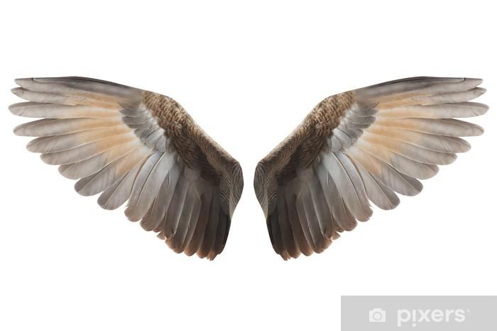 Mural de Parede em Vinil Wings - Animais imaginários