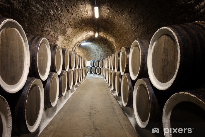 Barrels in the wine cellar Washable Wall Mural - Heavy Industry