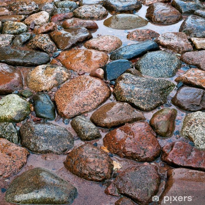 Vinyl Fotobehang Weg van een steen na een regen - Texturen