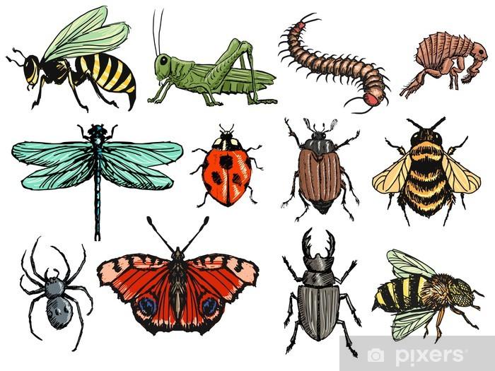 Sticker Pixerstick Les insectes - Vie