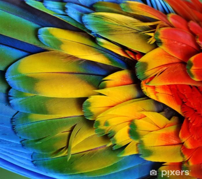 Macaw Feathers (Rainbow) Pixerstick Sticker - Birds