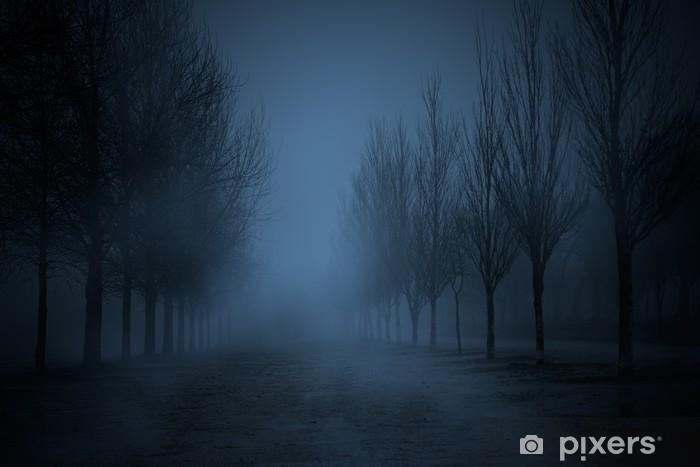 Fototapeta winylowa Ciemny parku - Style