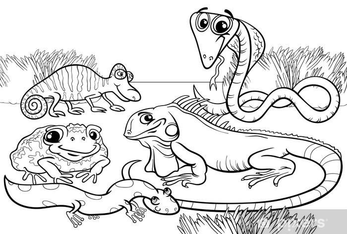 Papier peint vinyle Les reptiles et les amphibiens coloriages - Animaux imaginaires