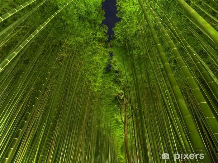 Papier peint vinyle Kyoto Bamboo grove - Thèmes