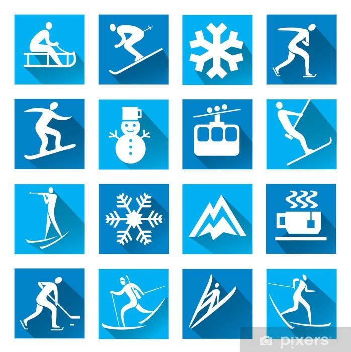 Winter sport blue web icons Vinyl Wall Mural - Winter Sports