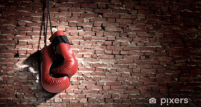 Boxing gloves Vinyl Wall Mural - Themes