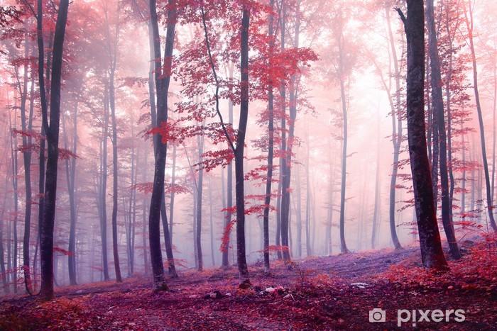 Vinyl Fotobehang Fantasie bos herfstkleur - Thema's