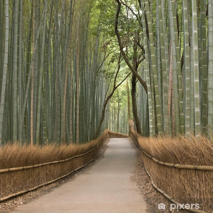 Fototapeta winylowa Kyoto bambusowy gaj - Bambusy