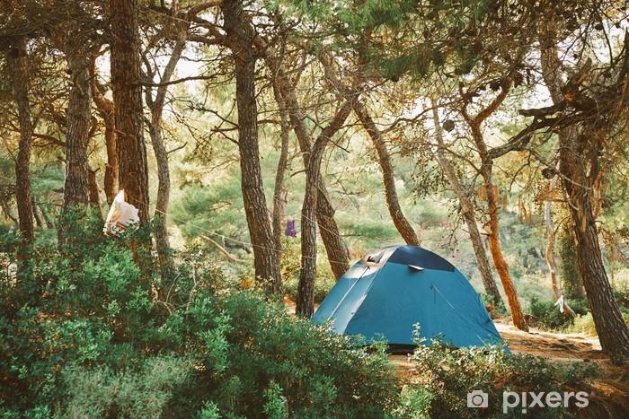 Vinil Duvar Resmi Kampçılık - Tatil