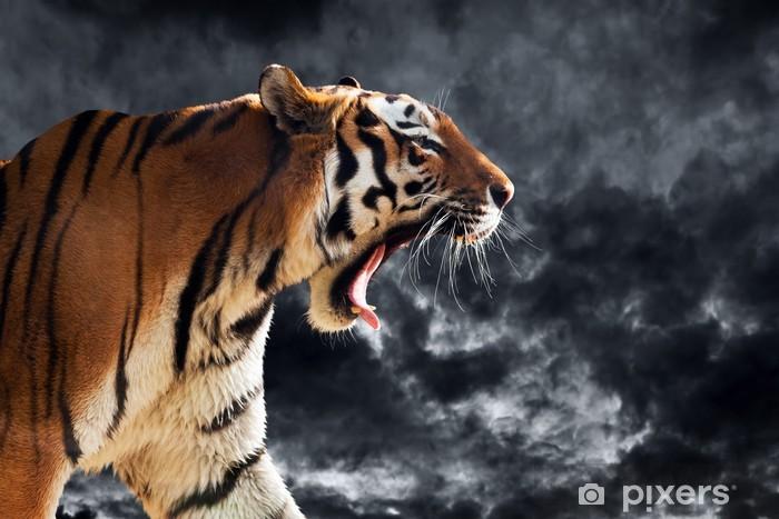 Sticker Pixerstick Tigre sauvage hurlant pendant la chasse. Ciel nuageux - Thèmes