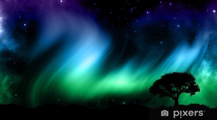 Fototapeta winylowa Nocne niebo z światła NORTHER z drzewa silhouettes - Tematy