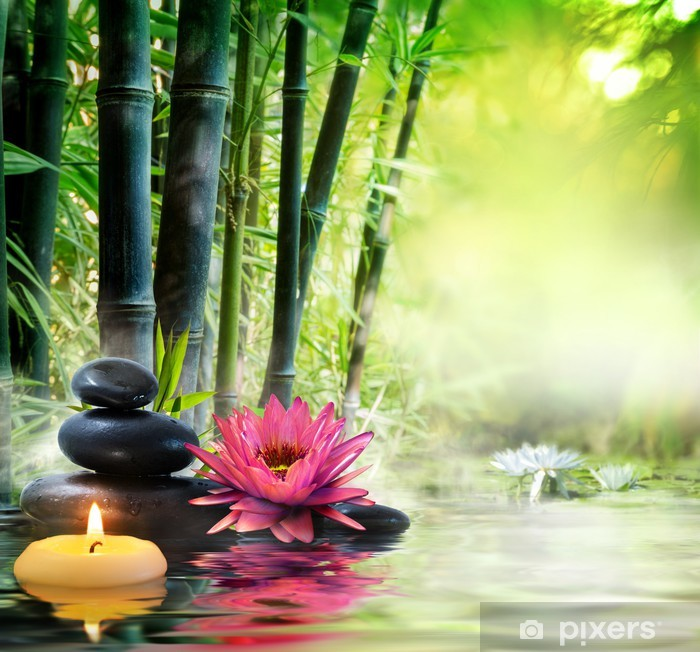 massage in nature - lily, stones, bamboo - zen concept Vinyl Wall Mural - Styles