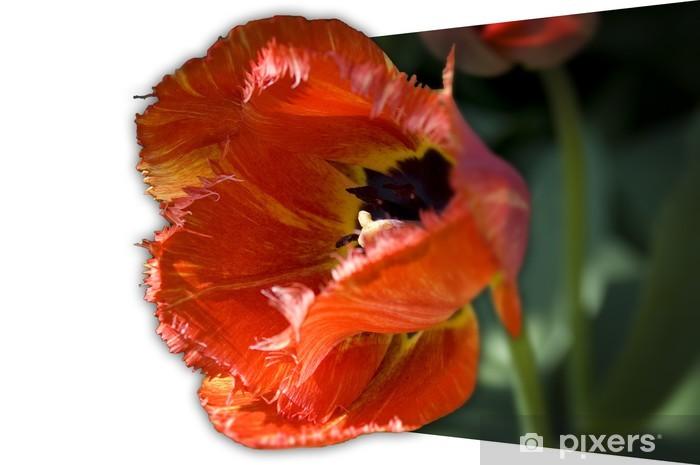 Sticker Pixerstick Fleur 3d - Fleurs