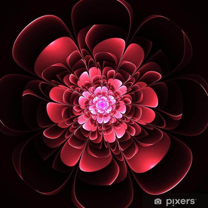 Siyah Arka Plan üzerinde Güzel Kırmızı çiçek Bilgisayar Gra