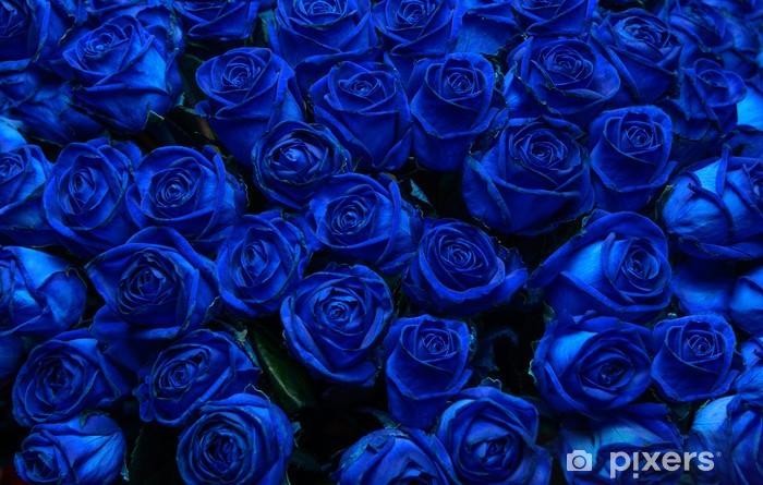1868bc0faab2ff Naklejka Niebieskie róże • Pixers® - Żyjemy by zmieniać