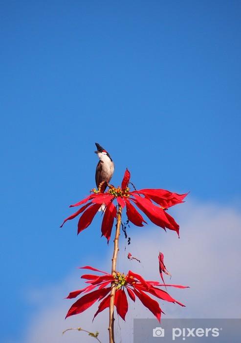 Naklejka Pixerstick Mauritius ptak na drzewie - Ptaki
