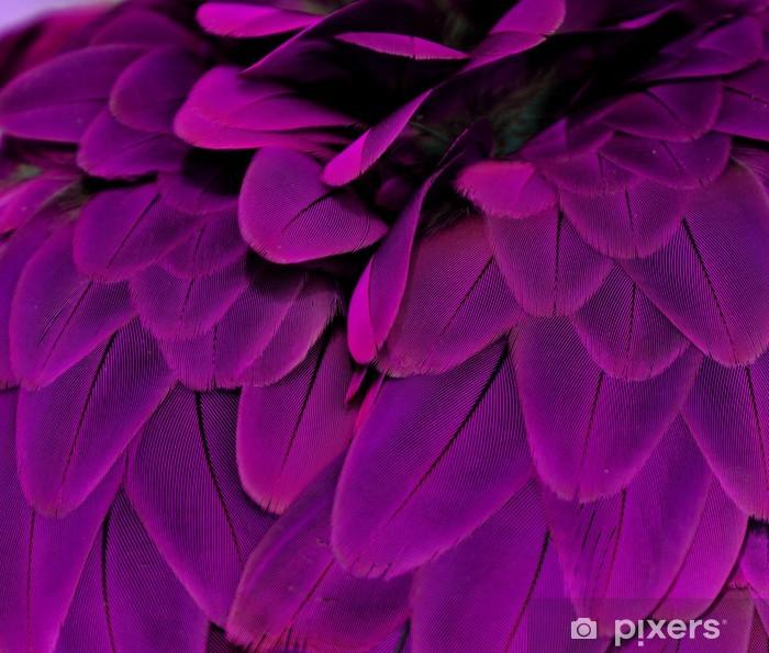Fototapeta winylowa Pióra; fioletowy - Przeznaczenia