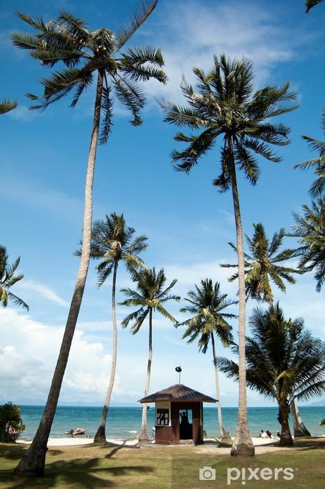 Fototapeta winylowa Wiele kokosowego drzewa w Angthong wysp National Marine Park - Wyspy