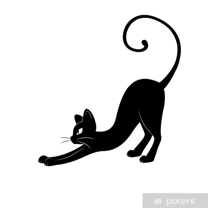 Nová mokrá černá kočička