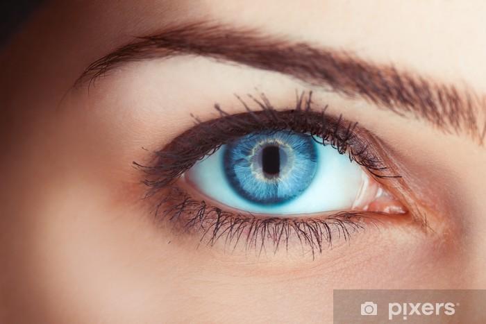 Nærbillede billede af kvindens blå øje Fototapet • Pixers® - Vi lever for forandringer