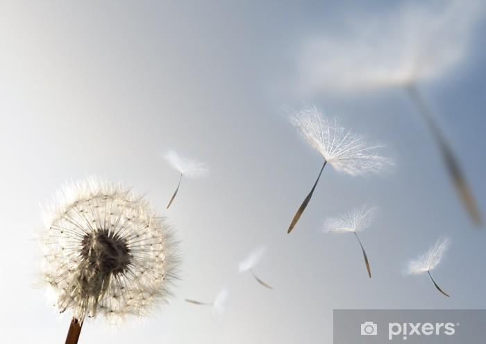 Vinilo Pixerstick Semillas de Crecimiento - Estilos