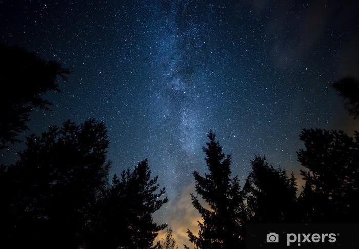 Vinyl Fotobehang Milky Way over de Forest - Thema's
