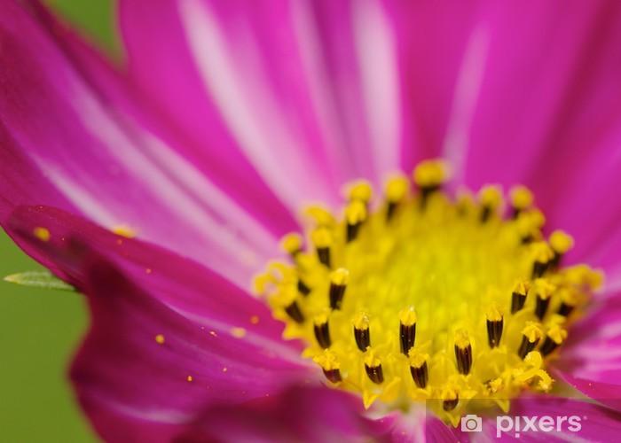 Naklejka Pixerstick Jesień Sakura - Pory roku