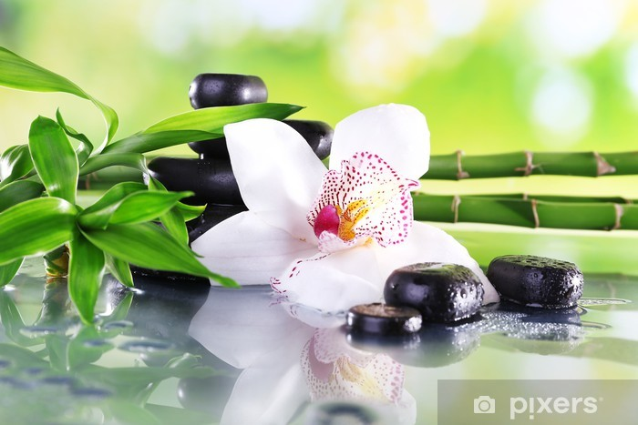 Spa stones, bamboo branches and white orchid Vinyl Wall Mural - Themes
