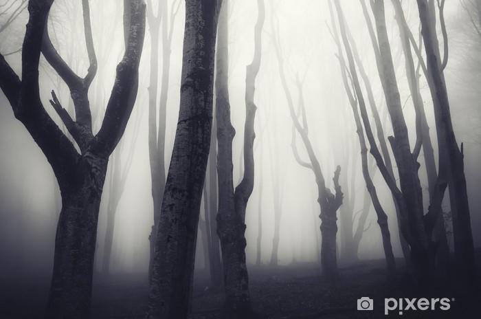 Fotomural Estándar Viejos árboles torcidos en un bosque oscuro espeluznante - Temas