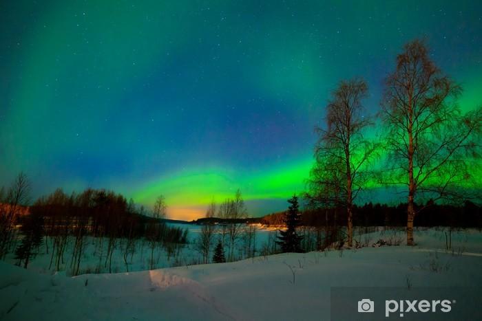 Fototapeta zmywalna Zorza polarna - Ekologia