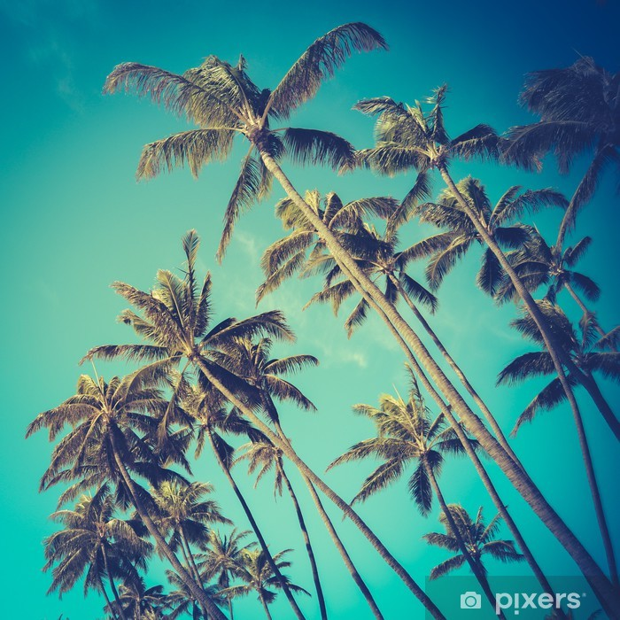 Carta da Parati in Vinile Alberi Retro Diagonal palme in Hawaii - Temi
