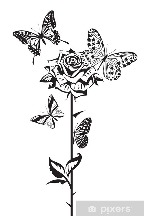 Carta Da Parati Disegno In Bianco E Nero Di Farfalle E Rose Pixers