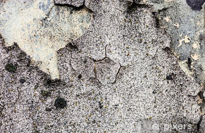 Papier peint vinyle La texture du mur de plâtre et de chaux mousse et craqué - Arrière plans