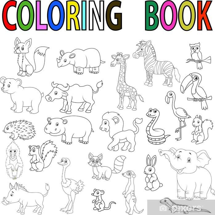 Carta Da Parati Animali Selvatici Libro Da Colorare Pixers