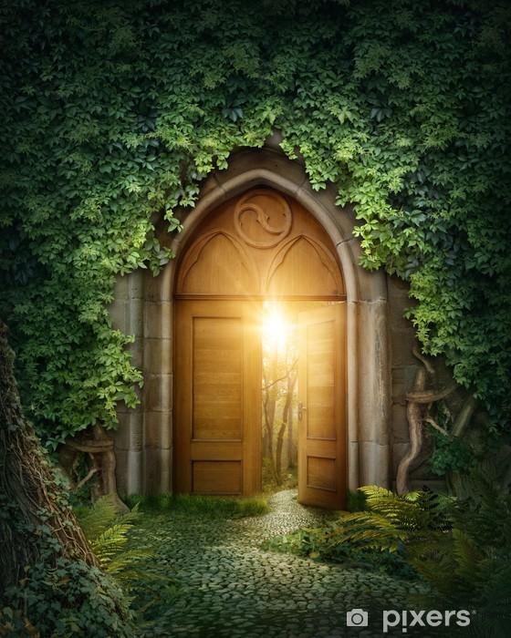 Fototapeta winylowa Tajemnicze wejście -
