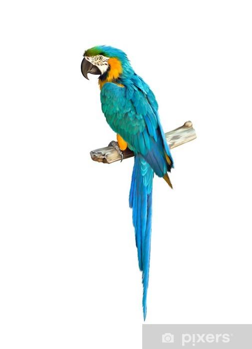 Wonderlijk Sticker Kleurrijke blauwe papegaai ara • Pixers® - We leven om te GL-86