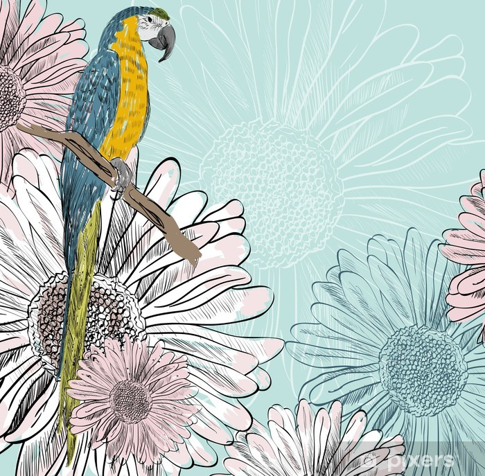 Plakát Papoušek - Ptáci