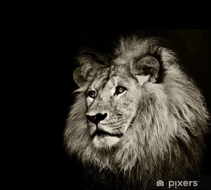 Çıkartması Pixerstick Güçlü aslan -