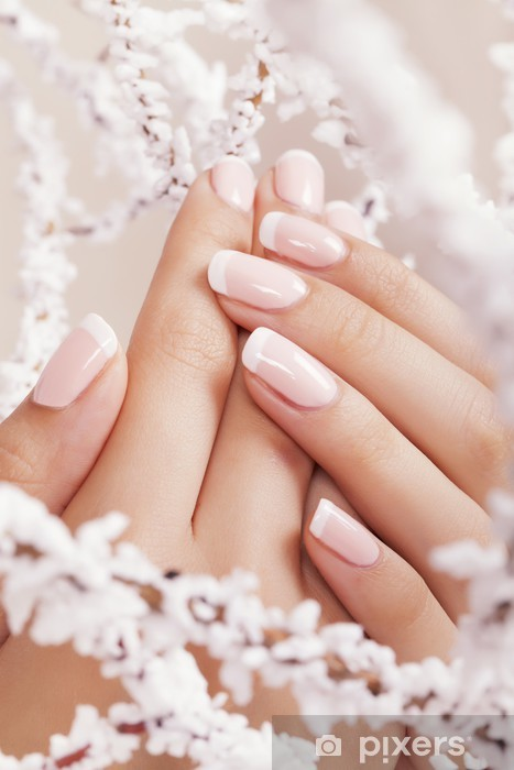 Fototapeta winylowa Paznokcie piękne kobiety z french manicure. - Uroda i pielęgnacja ciała