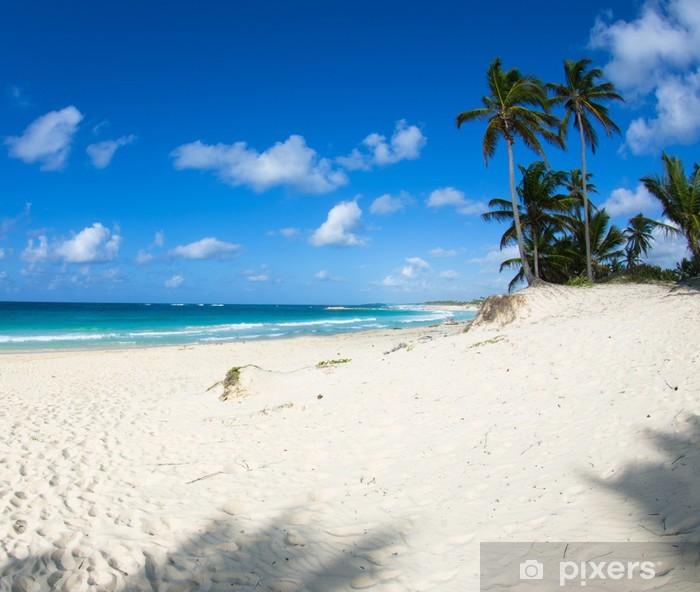 Fototapeta winylowa Plaża - Woda