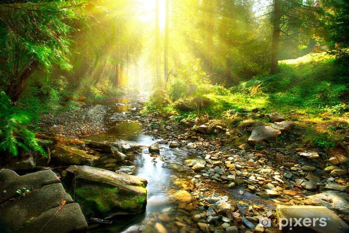 Papier peint vinyle Rivière de montagne tranquille dans une forêt verte - Thèmes