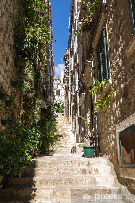 Fotomural Estándar Ruelle et escaliers de Dubrovnik - Europa