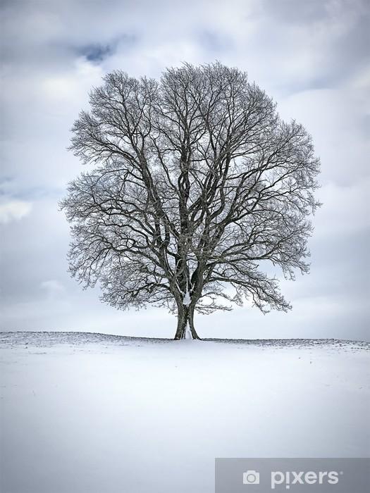 Vinilo para Nevera Invierno árbol -