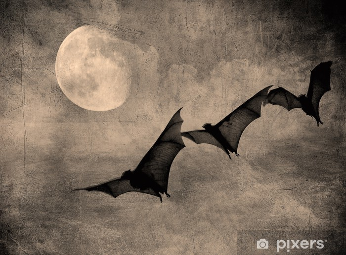 bats in the dark cloudy sky, perfect halloween background Vinyl Wall Mural - International Celebrations