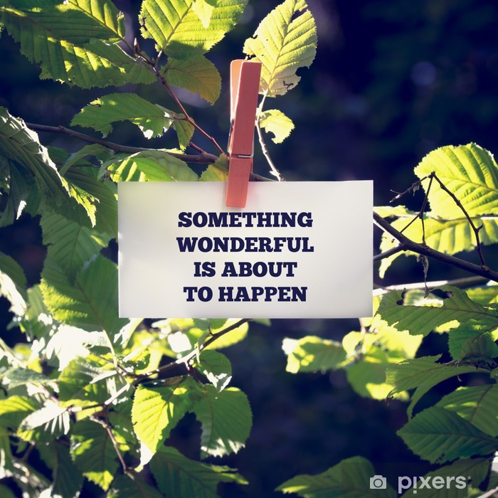 Something Wonderful Is About To Happen Poster - Trees