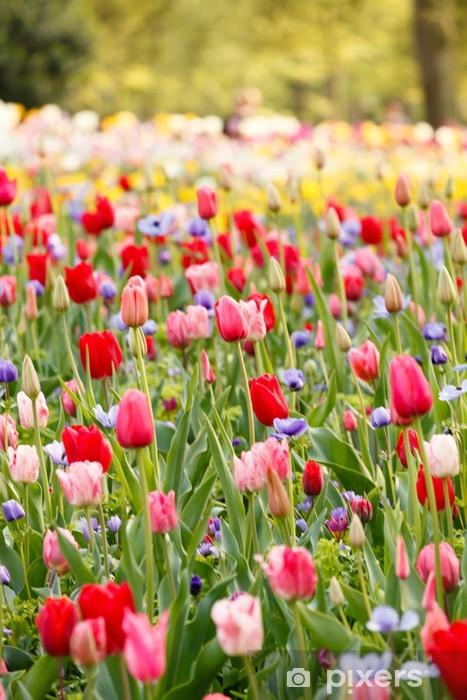 Naklejka Pixerstick Ogród wiosną - Pejzaż miejski