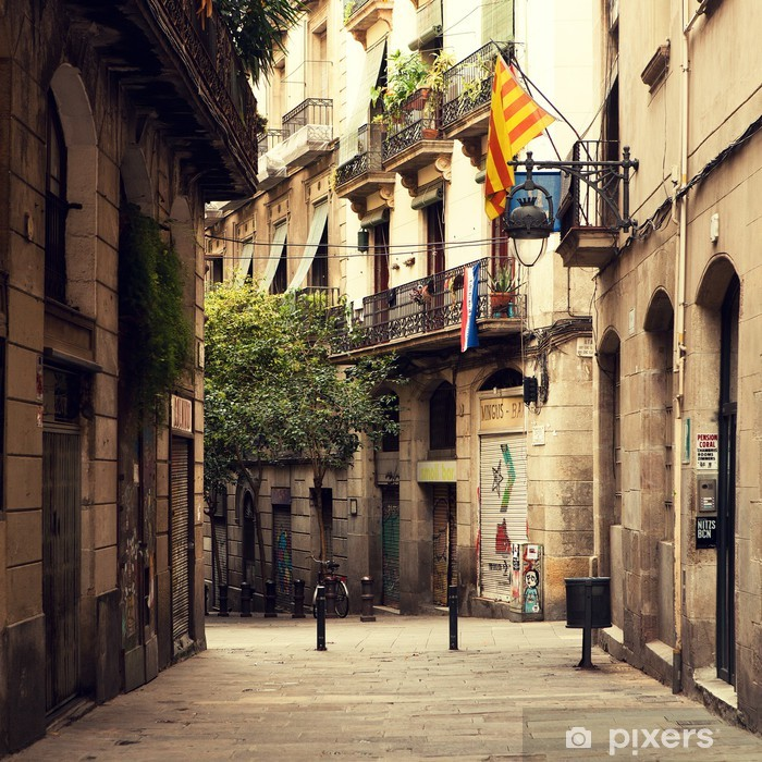 Street in gothic quarter in Barcelona. Vinyl Wall Mural - Themes