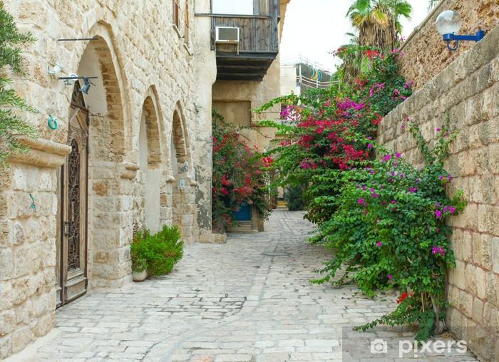 Typical alley in Jaffa, Tel Aviv - Israel Vinyl Wall Mural - Themes